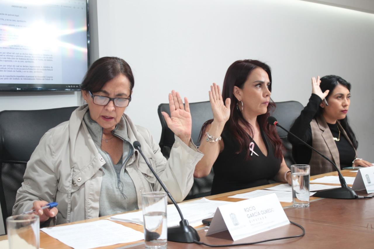 APRUEBAN INCLUIR LA VIOLENCIA MEDIÁTICA EN LA LEY PARA EL ACCESO DE LAS MUJERES A UNA VIDA LIBRE DE VIOLENCIA